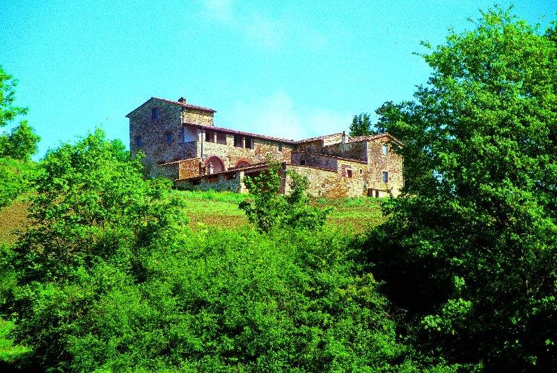 Farmhouse Rental in Tuscany, Castellina in Chianti (Chianti Area) - Villa - Image 1 - Castellina In Chianti - rentals