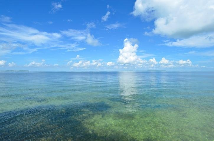 Endless Views of the Water - LITTLE BAY - Lower Duplex - Islamorada - rentals