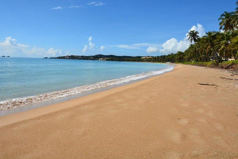 BEACH VILLA 188 Palmas Del Mar - Image 1 - Humacao - rentals