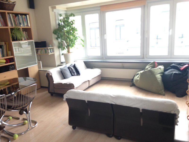 bright place on 3rd level with elevator. Views on the Belle Epoque villas. Several real green plants - Sunny apartment 80m2 in Belle Epoque Quarter - Ostende - rentals
