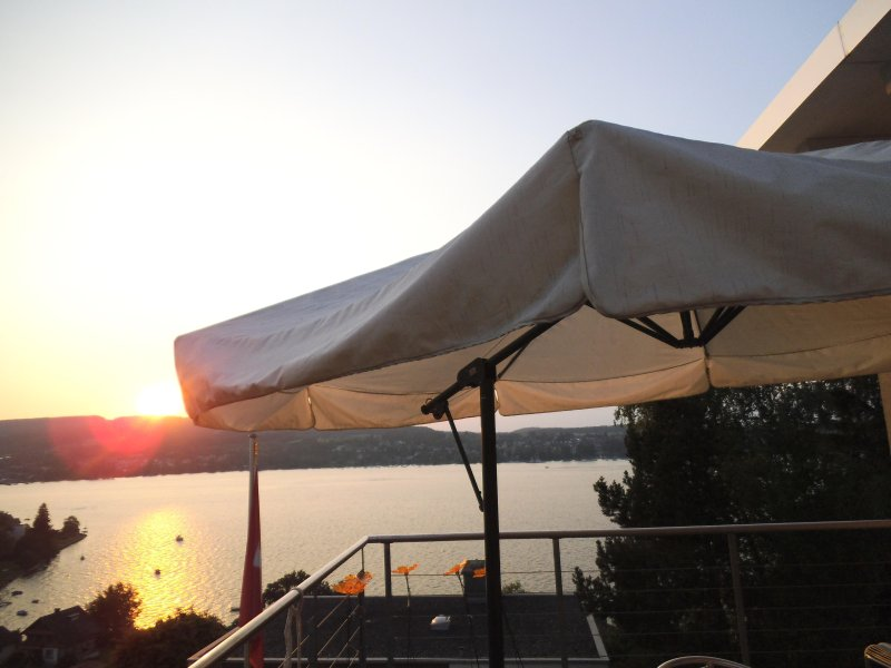 View over Lake Constance - Panoramic View of Lake Constance - Steckborn - rentals