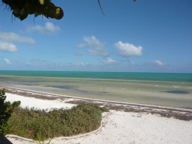 Open Water Views - SEA GRAPE - Long Key - rentals