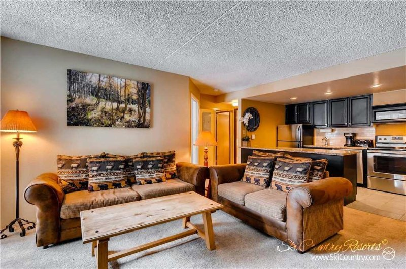 Trails End Condos 219 by Ski Country Resorts - Image 1 - Breckenridge - rentals