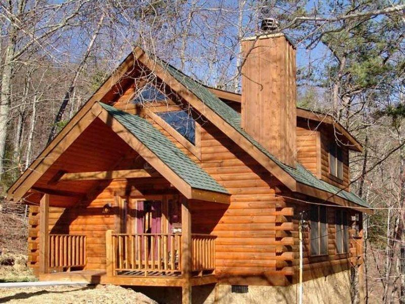Angel's Loft - Image 1 - Sevierville - rentals