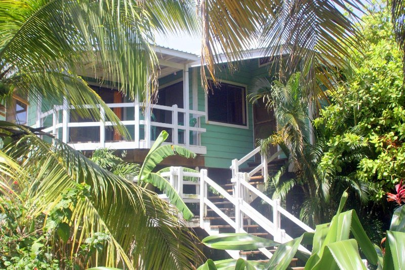 Casa Coral  - Casa Coral, 1 Minute walk from West End Beach. - West End - rentals
