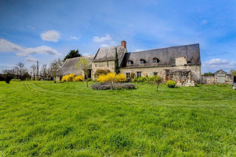 Maison Pierre-Louis - Image 1 - Varennes sur Loire - rentals