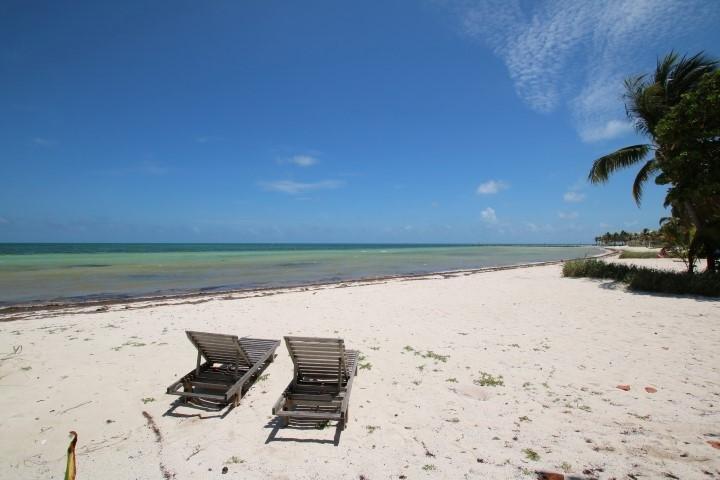 Lounge Oceanfront - SEA GRAPE - Long Key - rentals