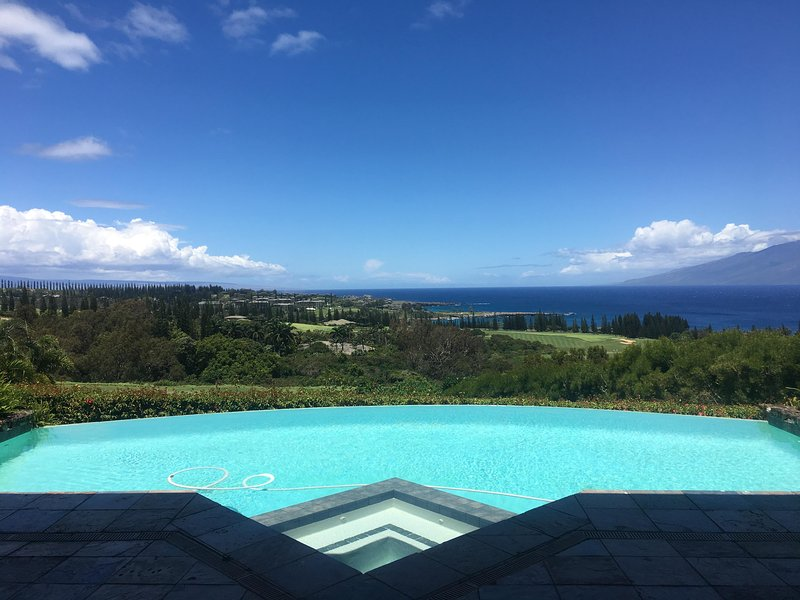 Plantation Estate - Image 1 - Kapalua - rentals