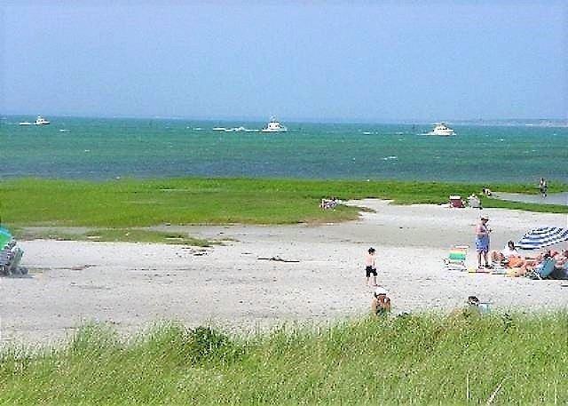Bright, Pet-friendly, beach cottage just 0.2 miles to Skaket beach! - Image 1 - Orleans - rentals