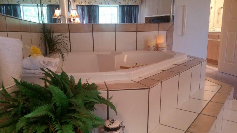 One bedroom Jacuzzi Suite - Image 1 - Branson - rentals