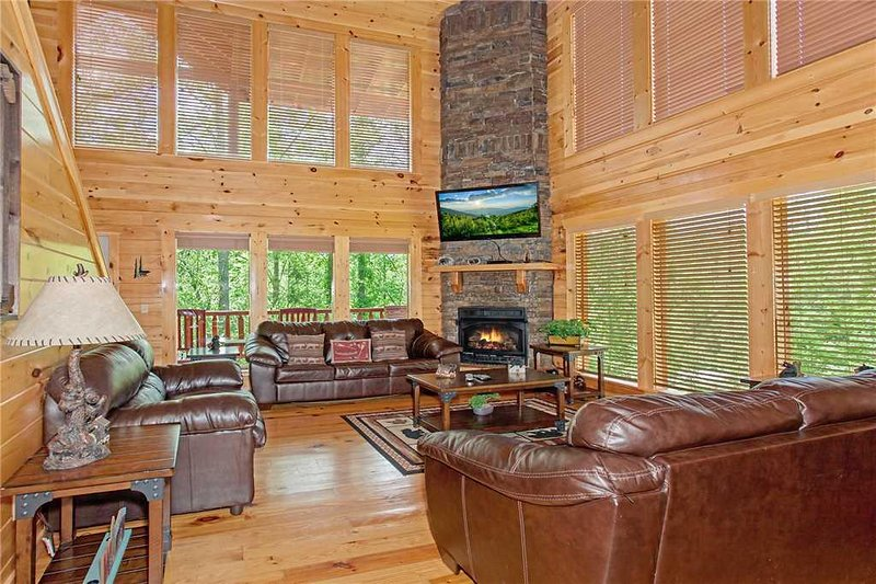 Beary Dee-Lightful - Image 1 - Pigeon Forge - rentals