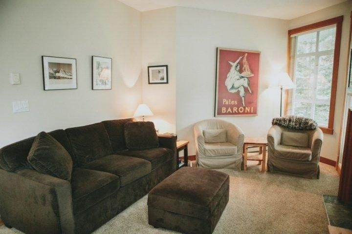 Bright livng room, sofa converts to queen bed - Granite Court Unit 312 - Whistler - rentals
