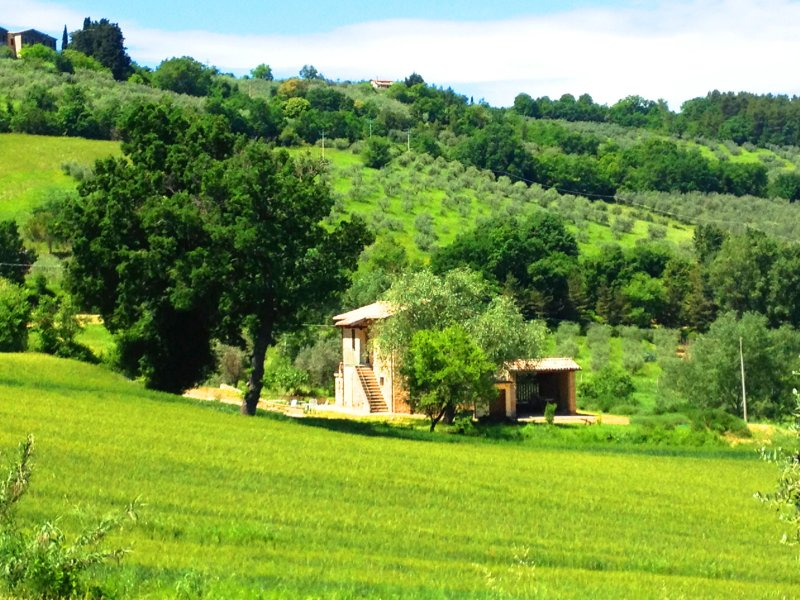 Front of property - Apartment in the Green Umbria - Bevagna - rentals