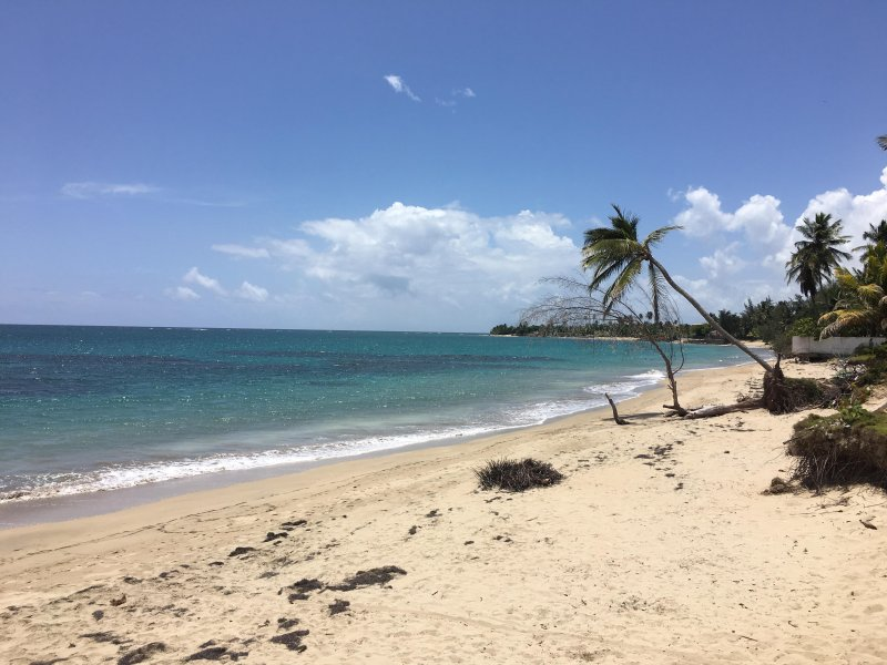 Getaway beachfront resort vacation condo rental - Image 1 - Loiza - rentals