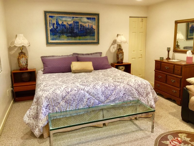 Spacious room with dresser, walk-in closet, shelves, and travel books - Welcome to our home - Edwards - rentals
