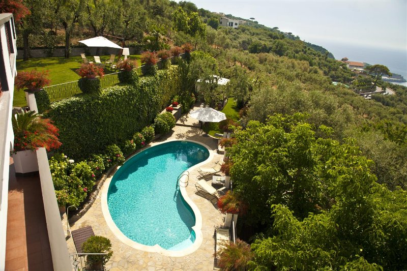 Villa Dei Fiori - Image 1 - Sorrento - rentals