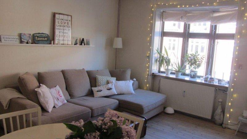 2 bedrooms, 1 bathroom - Cosy Copenhagen apartment at Amager - Copenhagen - rentals