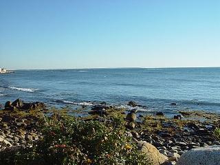 Nearby Rocky Coast - W133 - Wells - rentals
