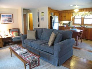 DOG FRIENDLY lovely home with Central A/C - HA0196 - Brewster vacation rentals