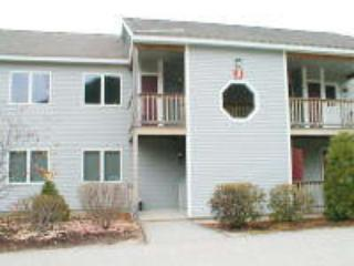 Eagle Ridge Resort Condo Rental - Image 1 - Bartlett - rentals