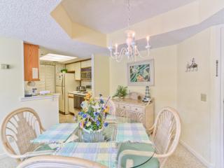 BC315 - Saint Simons Island vacation rentals