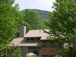 Clearbrook 11M - Managed by Loon Reservation Service - Lincoln vacation rentals