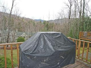 Forest Ridge 18-5 - Managed by Loon Reservation Service - Lincoln vacation rentals