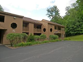 M125P- Managed by Loon Reservation Service - NH M&R:056365/Business ID:659647 - Lincoln vacation rentals