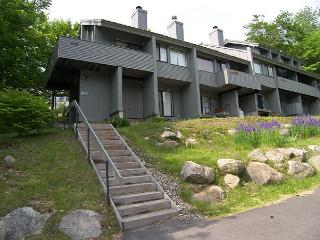 V044W- Managed by Loon Reservation Service - NH Meals & Rooms Lic# 056365 - Lincoln vacation rentals