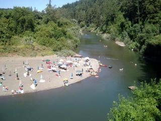 Summerhome Park Cabin 1 - Forestville vacation rentals