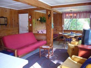 Summerhome Park Cabin 4 - Forestville vacation rentals