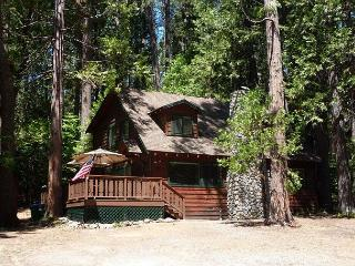 Gorgeous cabin- fireplace, near downtown & lake, deck, A/C &  firepit - Twain Harte vacation rentals