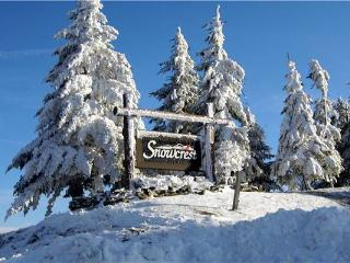 Snowcrest #306A - Snowshoe vacation rentals