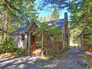 Pine River Cabin - Cozy for a Romantic Christmas, Fireplace, Hot Tub, Dogs OK - Brightwood vacation rentals