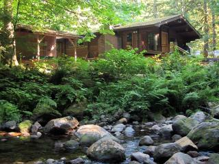 Moondance Cabin - Romantic Christmas Retreat, Secluded, Fireplace, Hot Tub - Zigzag vacation rentals