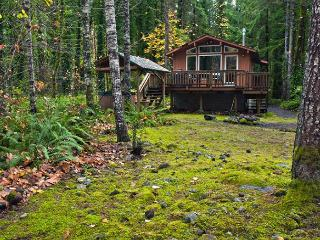 Riverwood Hideaway - Riverfront, Hot Tub, Dogs OK - Brightwood vacation rentals