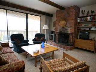 Nice House with Deck and Internet Access - Stowe vacation rentals