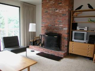 Notchbrook 08ABC - Stowe vacation rentals
