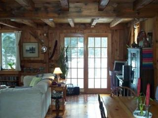 Bright 2 bedroom Vacation Rental in Hyde Park - Hyde Park vacation rentals