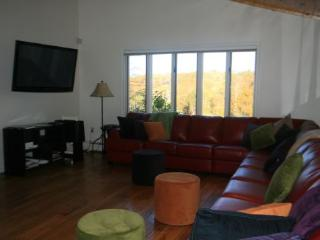 Bear Hollow - Stowe Area vacation rentals