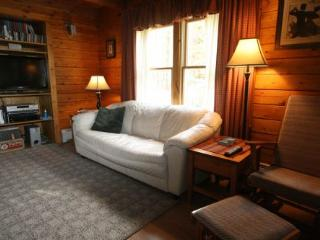 Cozy House with Deck and Internet Access - Stowe vacation rentals