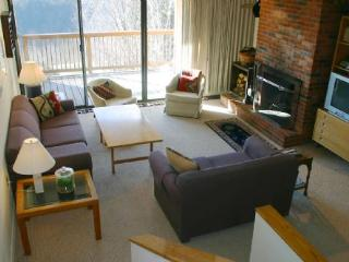 Comfortable 3 bedroom House in Stowe with Deck - Stowe vacation rentals
