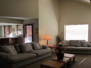 Great condo on the Payette river. Walk to lake. - McCall vacation rentals