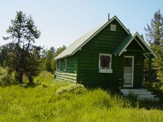 Cozy cottage with scenic meadow views - McCall vacation rentals