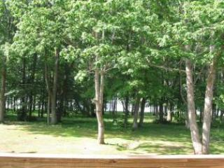 Perfect House with Private Outdoor Pool and A/C - Swanton vacation rentals