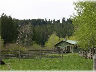 Brackett Creek Cabin - Clyde Park vacation rentals