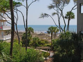WC4203 - Hilton Head vacation rentals