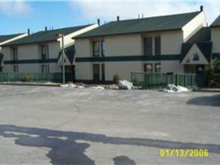 Leatherbark #308B - Snowshoe vacation rentals
