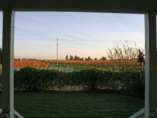 Wine Country Cottage - Healdsburg vacation rentals