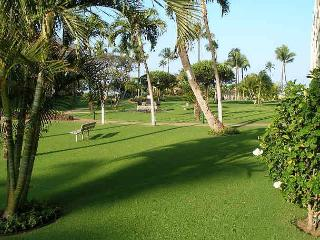 Maui Sunset 105A - Kihei vacation rentals